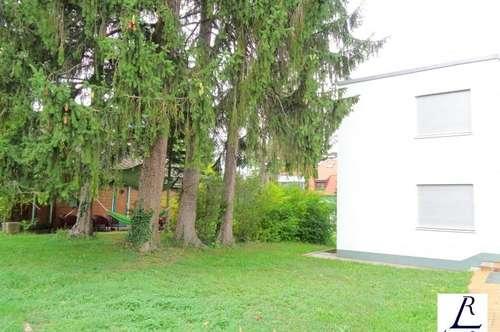 Nähe Napoleonwald/ Dachgeschoßetage im Zweifamilienhaus/ große Terrasse/ Garten!