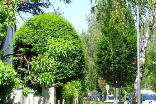 Nähe ORF Zentrum/ Hausetage mit eigenem schönem Garten!