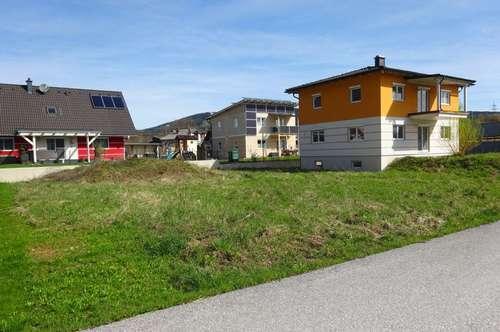 Neuer Preis! Neues Ein/Zweifamilienhaus - selbst fertigstellen und richtig sparen!