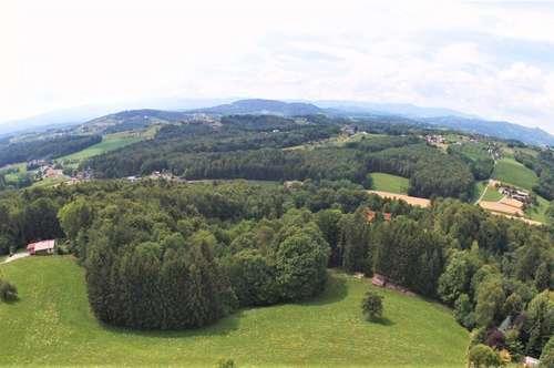 Einmalige Gelegenheit - Bauplatz samt Massivkeller mitten im Weingarten! Ruhe und Natur!
