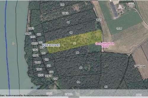 Mischwald mit ca. 1,57 ha Nähe Völkermarkt zu verkaufen