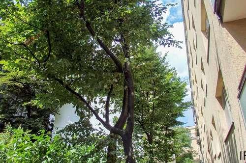 Top Lage nahe Schönbrunn! - Relaxen und Wohnen in sanierter 85m² Wohnung mit Lift