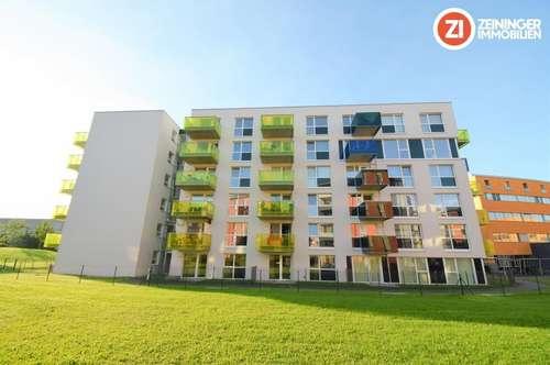 Geräumige 2-ZI Wohnung inkl. Küche und Balkon! Ab 01.02.2019!