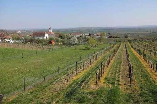 Freizeitparadies - Idylle und Erholung pur   30 Min.bisWien   ! Presshaus+Weinkeller+Garten+Hütte+Strom/Wasser/Kanal