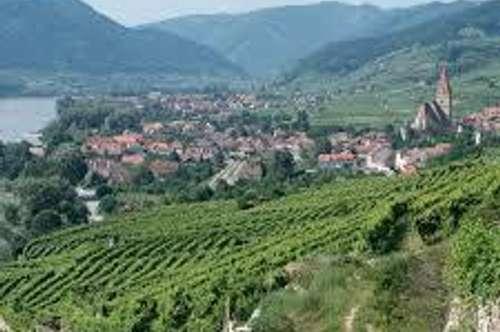 Wachau: Verkaufe den schönsten Garten der Wachau + 50 qm Appartement im historischen Winzerhof