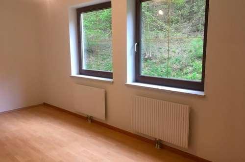 Schöne ruhige Wohnung PROVISIONSFREI in Edlitz zu verkaufen!!!