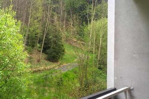 PROVISIONSFREI!!! Schöne helle 3-Zimmerwohnung in Edlitz zu verkaufen!!!