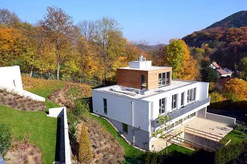 Traumvilla mit Wienerwaldblick - Villa II