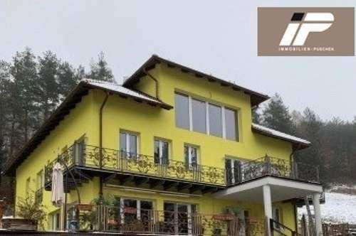 Modernes Mehrfamilienhaus in schöner Hanglage (Waldrand), Weinkeller, Pool und Biotop, große Garage