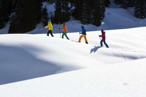 Provisionsfrei - Urlaubsparadies und Geldanlage im Montafon/Silvretta