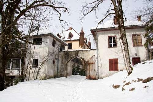 Einzigartig - Traumhafte Lage für ein Jagd-Schlosshotel
