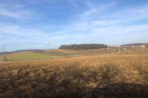 Ackerflächen, Grünland-. drei Grundstücke in der Nähe von MANK - zu Verkaufen