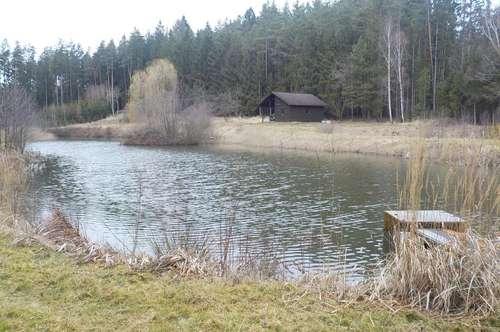2 Fischteiche mit Bewirtschaftungshütte nahe Waidhofen/ Th. zu verkaufen
