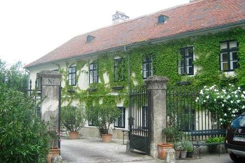 Großzügiges, herrschaftliches Wohnen in Krems - Süd!