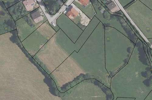 Neues Aufschließungsgebiet im Fischbachgraben - Neue Siedlung