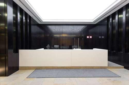 All-inklusive Büro mit zwei Arbeitsplätzen am Opernring 1