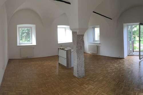 Schloss-Wohnung nähe Wels
