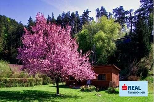 Kleines Ferienhaus im Paradies von Kärnten