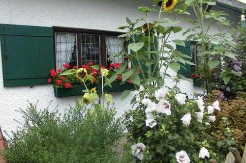 Traumlage in Salzburg - Aigen