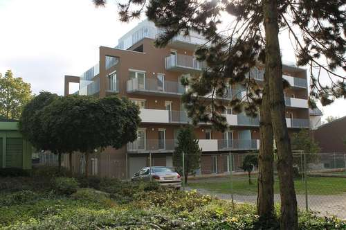 34m² / 2 Zimmer / 1 OG / großer Balkon / Innenhoflage