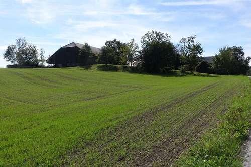 Bauernhof im Bezirk Rohrbach