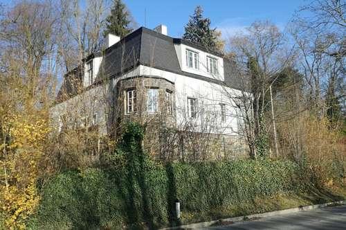 Herrschaftliches Wohnen mit Aussicht auf die Donau, den Voralpen und als direkter Nachbar der Habsburger (Schloß Persenbeug), umgeben vom Schloßpark