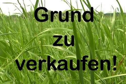 SBG Stadtrand: Salzburg: Grund zu verkaufen!