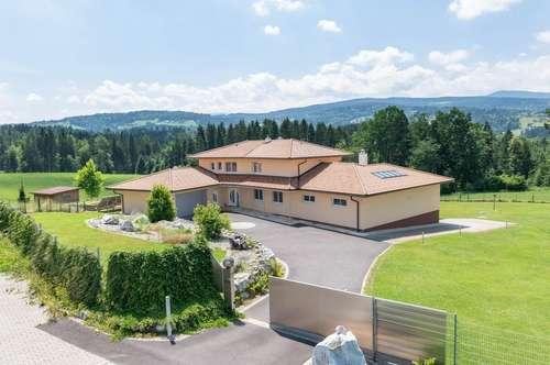 Luxusvilla mit Weingartenblick und Landwirtschaft in absoluter Ruhelage - Privatverkauf