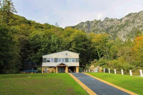 Entfalten am Waldrand: Gehobenes EFH auf großem Grund nahe Salzburg