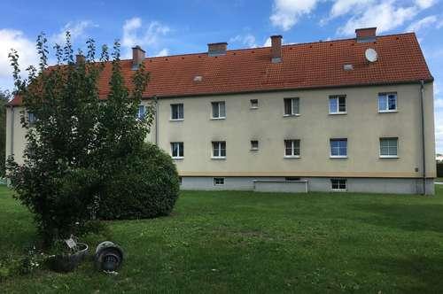 GÜNSTIG WOHNEN!! Kleine Starterwohnungen mit Potenzial in Traismauer, Donaustraße zu vermieten - PROVISIONSFREI