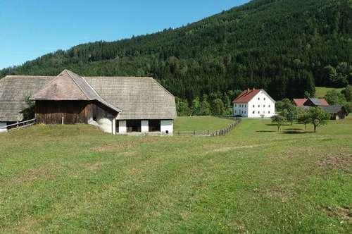 Bauernhof mit Stall und Wiese
