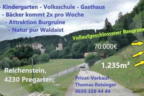 Sonniger Südhang mit Blick auf die Ruine Reichenstein