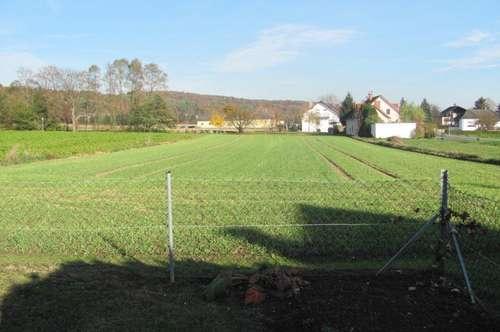 Sehr sonniger Baugrund in Rax bei jennersdorf