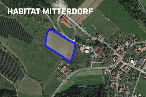 16 Grundstücke in Mitterdorf an der Raab. In unmittelbarer Nähe zu Graz, Weiz und Gleisdorf. Nur in Verbindung mit Hauskauf (individuell planbar)
