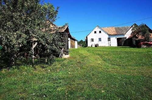 Grundstück mit altem sanierungsbedürftigen Bauernhaus