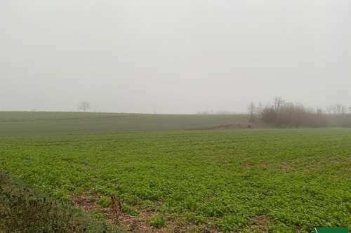 Land- und forstwirtschaftliches Grundstück
