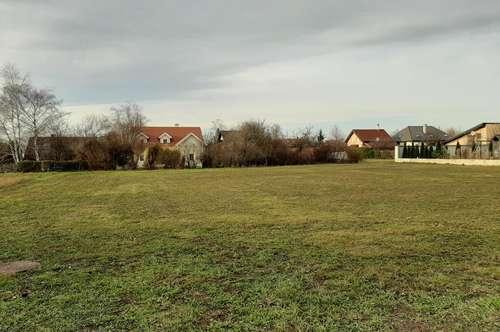 PODERSDORF AM SEE/ Privatverkauf von 2 Baugrundstücken / Seenähe um je 242.500,--