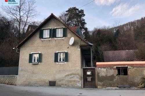 Kleines Bauernhaus für Bastler in Frohnleiten