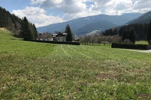2 schöne Grundstücke in Kreischbergnähe