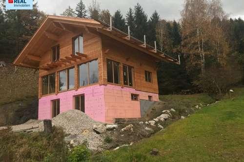 Haus mit Grimmingblick (Ferienwohnsitzwidmung)