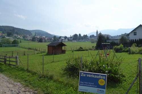 Sonniges Baugrundstück in 8102 Semriach!