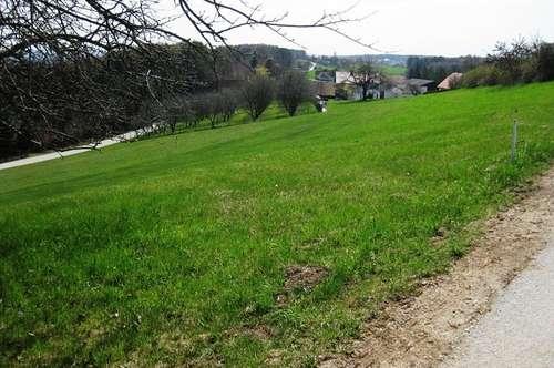 Baugrundstück Nähe Kaindorf bei Hartberg