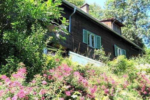 Bastlerhit! Ein-Zweifamilienhaus im Grünen mit Blick über Graz in 8052