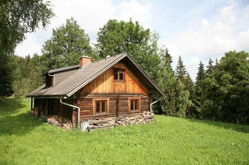 Berghütte im Gröbmingerland!