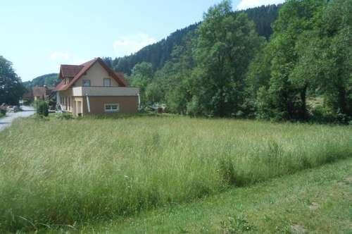Sonniges, ebenes Baugrundstück in der Nähe von Bärnbach!