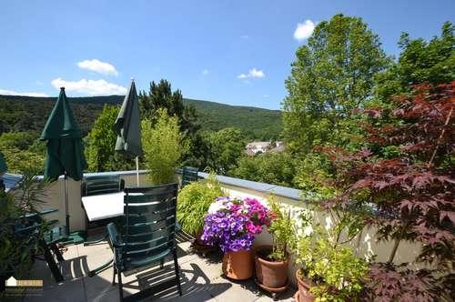 Villa Rauhenstein! Schöne Dach-Terrassenwohnung