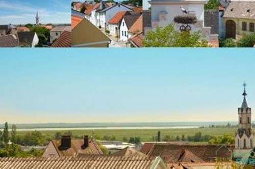 2 Häuser auf einen Grundstück mit Gewölbekeller im Zentrum!