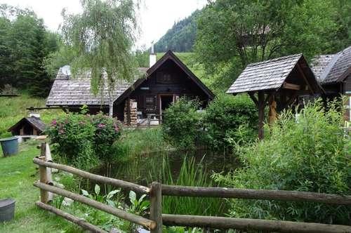Äußerst gemütliches Holzhäuschen in Donnersbachwald!