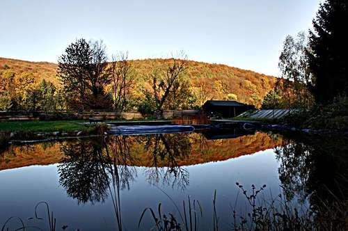 Denken Sie an Ihre Zukunft! - in unmittelbarer Nähe der Stadt - 2 km vom Weidlingbach bis zum Grinzing