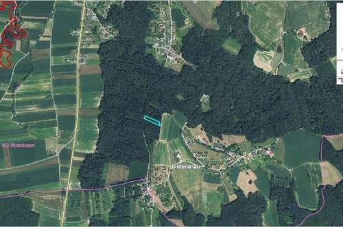 1.687m² großes Waldgrundstück
